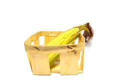 Una spiga del granoturco in un canestro isolato Immagine Stock