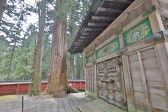 Una stalla di tre scimmie saggie di Tosho Gu Fotografia Stock