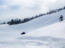 Una stalla e un chalet vuoti e soli nelle alpi svizzere - 1 Immagine Stock