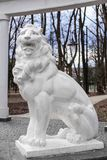 Una statua di un leone Immagine Stock