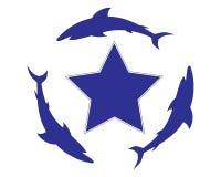 Una stella con gli squali Immagini Stock