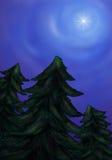 Una stella luminosa che splende sopra una foresta 2016 dell'abete Fotografie Stock
