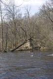 Una storia nascosta s del ` del fiume Fotografie Stock