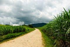 Una strada ad una casa di vacanza del lato della montagna La strada è uno streptococco lungo Immagini Stock Libere da Diritti