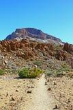 Una strada alla montagna Fotografie Stock Libere da Diritti