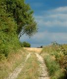 Una strada attraverso i campi fotografie stock libere da diritti