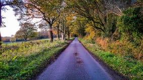 Una strada in autunno fotografia stock