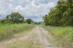 Una strada in campagna fotografia stock