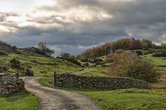 Una strada campestre d'avvolgimento che passa attraverso il prato e gli alberi rurali di autunno immagine stock libera da diritti