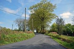 Una strada campestre ha allineato dalle banche e dagli alberi erbosi con un cielo blu e si appanna il fondo fotografia stock libera da diritti