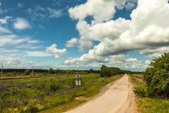 Una strada che passa i prati verdi Fotografia Stock