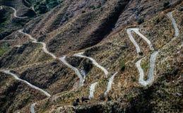 Una strada del serpente Fotografia Stock