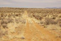 Una strada della prateria nel New Mexico Fotografia Stock