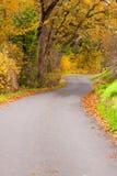 una strada di 2 autunni Fotografie Stock