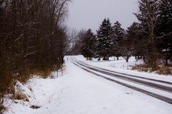 Una strada di inverno Immagine Stock