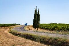 Una strada in mezzo alle vigne nel sud della Francia Fotografia Stock Libera da Diritti