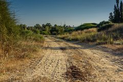 Una strada non asfaltata frequentemente utilizzata fotografia stock libera da diritti