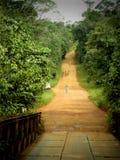 Una strada rurale in pieno di colore del mattone Fotografia Stock Libera da Diritti