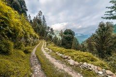Una strada a terra coperta di erba, di bosco ceduo con gli alberi senza foglie e di nuvole su un cielo blu immagine stock libera da diritti