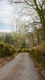 Una strada ventosa selvaggia in Inghilterra Fotografie Stock
