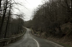 Una strada vuota Fotografia Stock Libera da Diritti