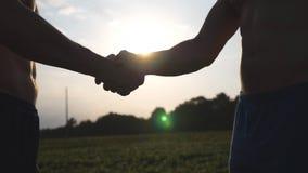Una stretta di mano amichevole di due uomini bianchi muscolari irriconoscibili con lustro del sole a fondo Agitazione delle armi  Fotografia Stock Libera da Diritti