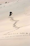 Una subida difícil a la duna enorme Fotos de archivo