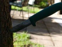 Una supervivencia y un cuchillo de trabajo está en la corteza de un árbol fotos de archivo