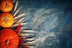 Una tabla adornada con las calabazas, festival de la cosecha, acción de gracias feliz Foto de archivo libre de regalías