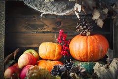 Una tabla adornada con las calabazas, festival de la cosecha, acción de gracias feliz Imagen de archivo