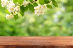 Una tabla de madera vacía y una rama del jazmín floreciente sobre ella Imagen de archivo