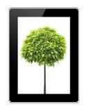 Una tableta en los fondos blancos Fotos de archivo
