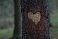 Una talla en forma de corazón Imagen de archivo