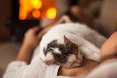 Una tarde del purrfect - mujer que se relaja con su gatito Imágenes de archivo libres de regalías