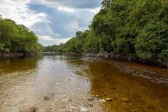 Una tarde nublada en la selva del Amazonas, Venezuela fotos de archivo