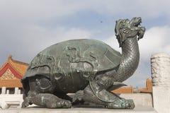 Una tartaruga di rame nella città severa immagini stock