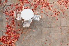 Insieme della Tabella circondato dalle foglie cadute Fotografie Stock Libere da Diritti