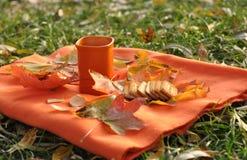 Una taza anaranjada de té, de hojas de arce coloridas y de galletas en una superficie anaranjada Fotografía de archivo libre de regalías