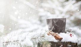 Una taza con una bebida caliente en el cacao caliente del bosque del invierno con el cinn Foto de archivo libre de regalías
