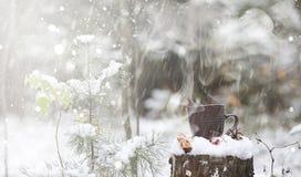 Una taza con una bebida caliente en el cacao caliente del bosque del invierno con el cinn Foto de archivo