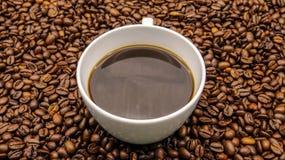 Una taza de café sólo sobre los granos de café asados foto de archivo libre de regalías