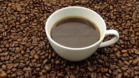 Una taza de café sólo sobre los granos de café asados imagen de archivo libre de regalías