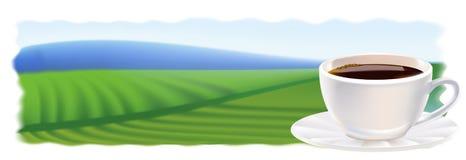 Una taza de café y de plantaciones de café. Panorama. Fotografía de archivo libre de regalías
