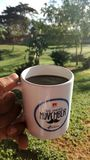 Una taza de caf? fotos de archivo libres de regalías