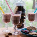 Una taza de chocolate caliente con las galletas Imagen de archivo