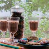 Una taza de chocolate caliente con las galletas Imagen de archivo libre de regalías
