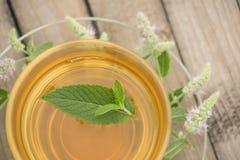 Una taza de cristal con té de oro con los soportes de las hojas y de flores de la menta en un platillo y en una tabla de madera e Foto de archivo libre de regalías