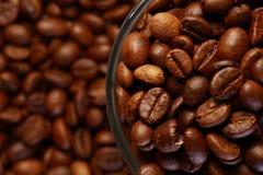 Una taza de grano de café Foto de archivo