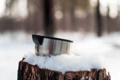 Una taza de soportes calientes del té en un tocón nevado en el invierno, frío, bosque del pino fotos de archivo