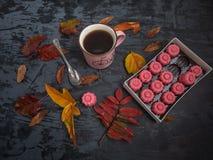 Una taza de té, una caja de dulce de azúcar de la fresa de los chocolates rodeado por las hojas de otoño coloreadas fotos de archivo libres de regalías